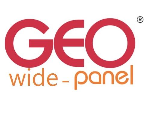 geo-wide-panel